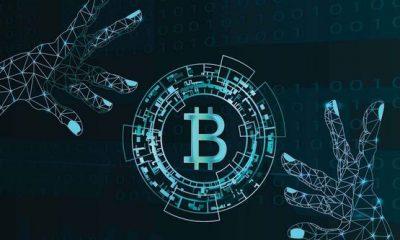 Crypto Fight